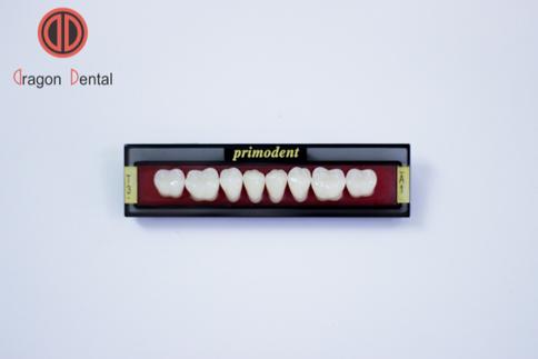 Răng nhựa tháo lắp Primodent